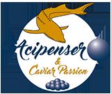 Logo Acipenser